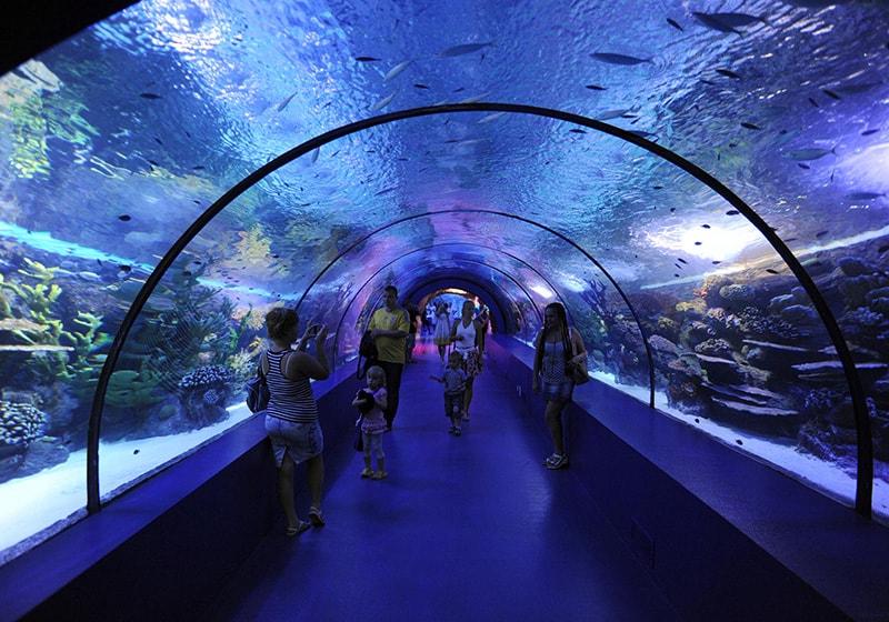 Largest aquarium in Turkey in Antalya