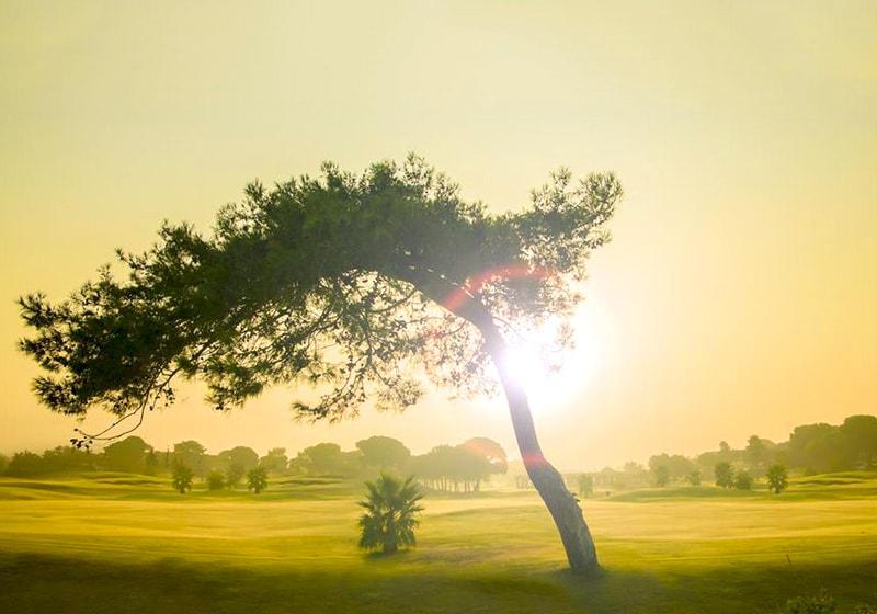 Закат с видом на гольф-поля, Белек