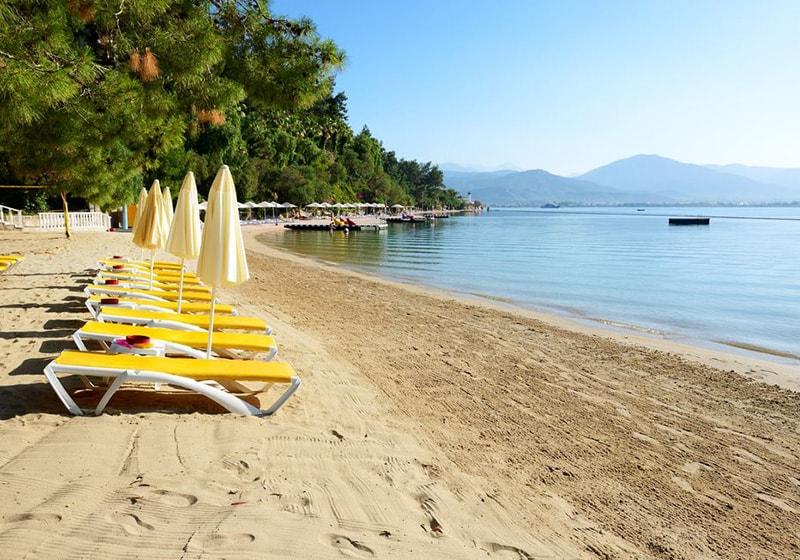 الشاطئ فتحية في يوم مشمس